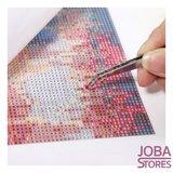 "Diamond Painting ""JobaStores®"" Rosina Wachtmeister© Felicita 45x60cm"