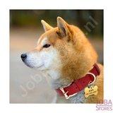 Collier de chien personnalisé 009 avec votre propre nom_