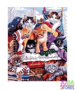 Schilderen op nummer Kittens 40x50cm